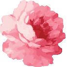 Modern Native casket spray