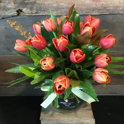 Funky Tulip