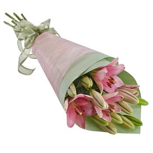 Market Lilies
